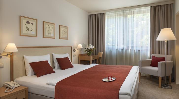 Boedapest, Hotel Castle Garden, Standaard kamer