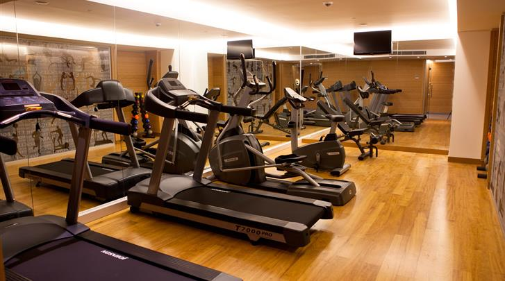Istanbul, Hotel Innova, Fitnessruimte