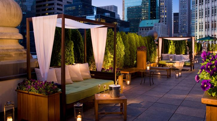 New York, Hotel The Roosevelt, Dakterras