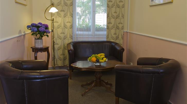 Praag, Hotel Anna, Lounge