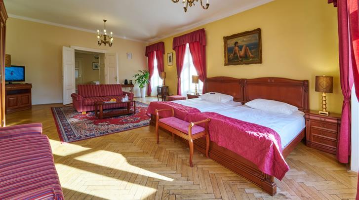 Praag, Hotel Josephine Old Town Square, Standaard kamer