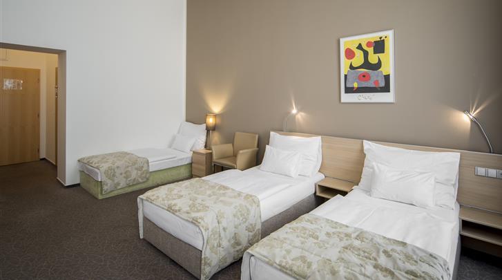 Praag, Hotel Pav, Triple kamer