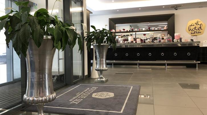 Wenen, Arthotel ANA Boutique Six, Entree